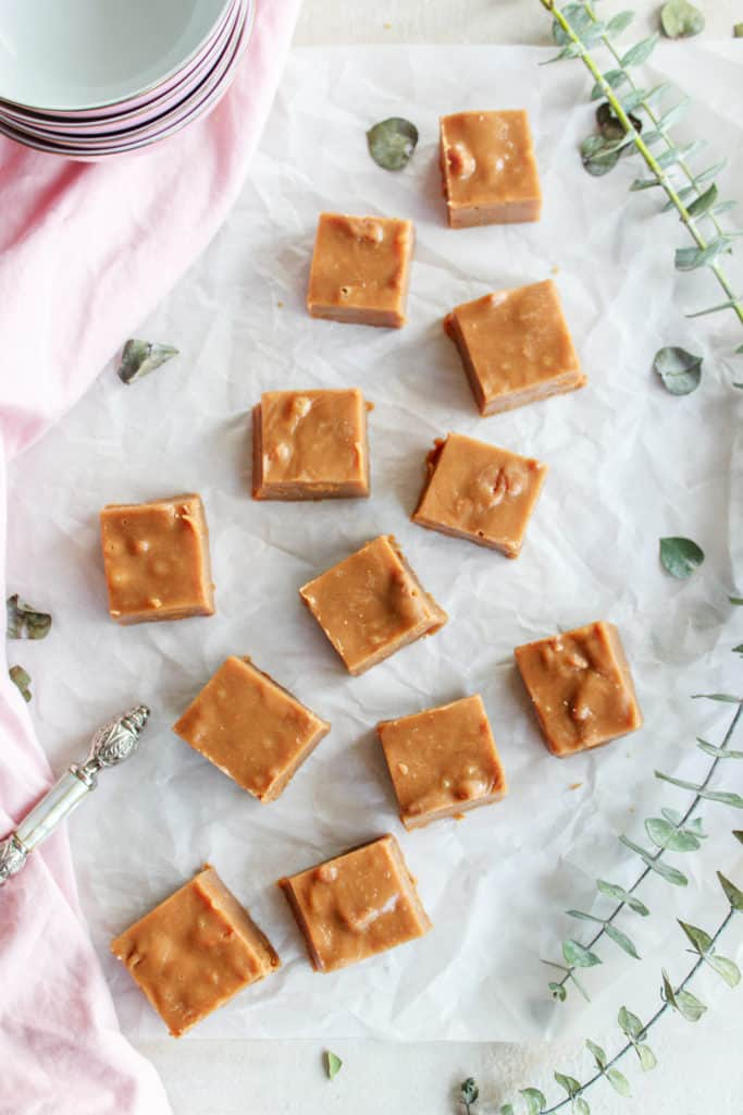 Rich, creamy, delectable, mouthwatering, fudge that only takes 10 minutes to make! Super easy, the hardest part will be waiting for it to cool! #fudge #cookiebutter #easyfudge frostingandfettuccine.com
