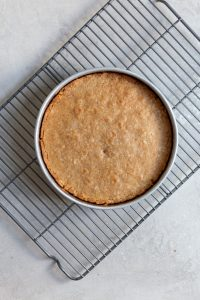 A baked cake in a cake pan